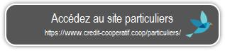 """Bouton """"Accedez au site particuliers"""""""